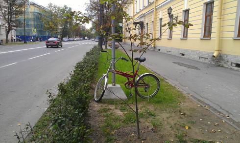 """""""Велопарковка"""" у здания Администрации"""